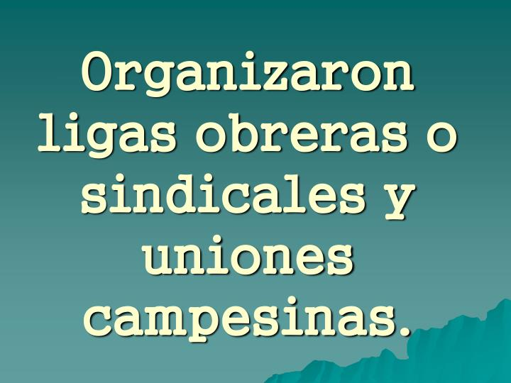 Organizaron ligas obreras o sindicales y uniones campesinas.
