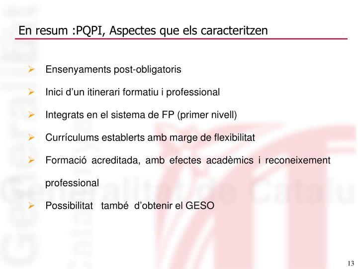 En resum :PQPI, Aspectes que els caracteritzen