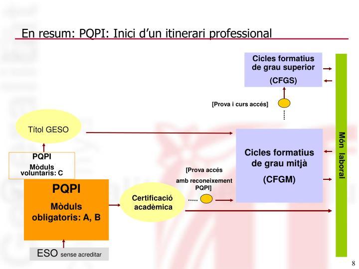 En resum: PQPI: Inici d'un itinerari professional