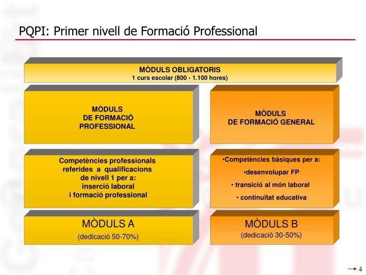 PQPI: Primer nivell de Formació Professional