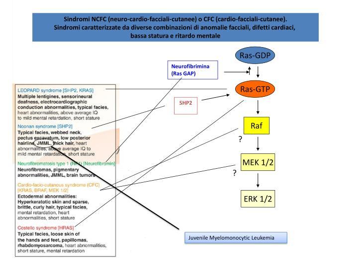 Sindromi NCFC (neuro-cardio-facciali-cutanee) o CFC (cardio-facciali-cutanee).