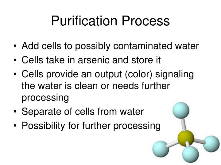 Purification Process