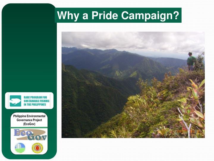 Why a Pride Campaign?