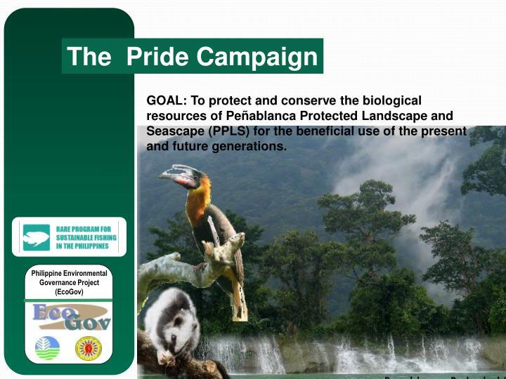 The  Pride Campaign