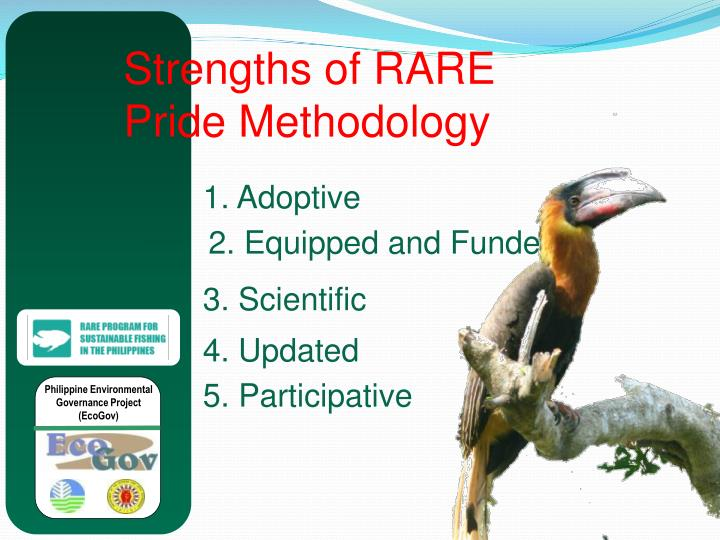 Strengths of RARE Pride Methodology