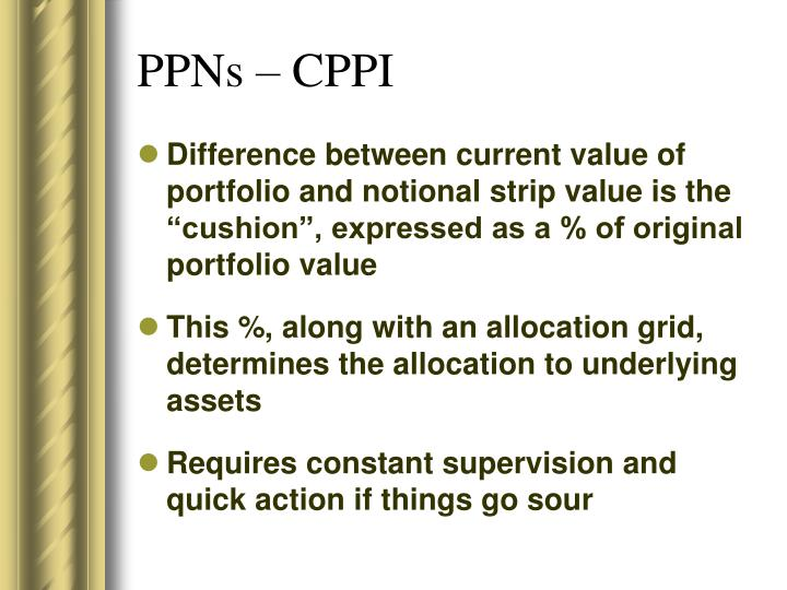 PPNs – CPPI