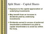 split share capital shares