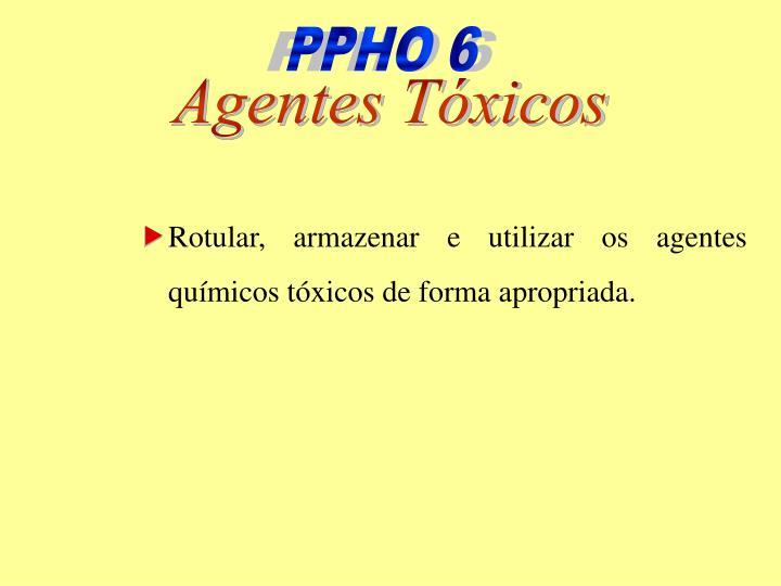 PPHO 6