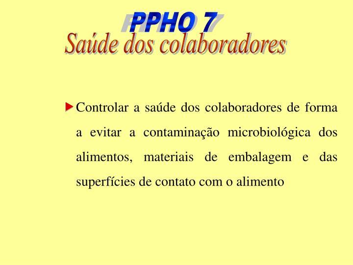 PPHO 7