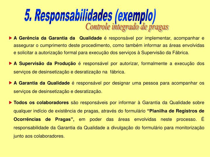 5. Responsabilidades (exemplo)