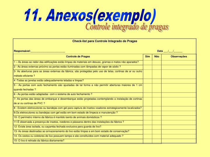 11. Anexos(exemplo)