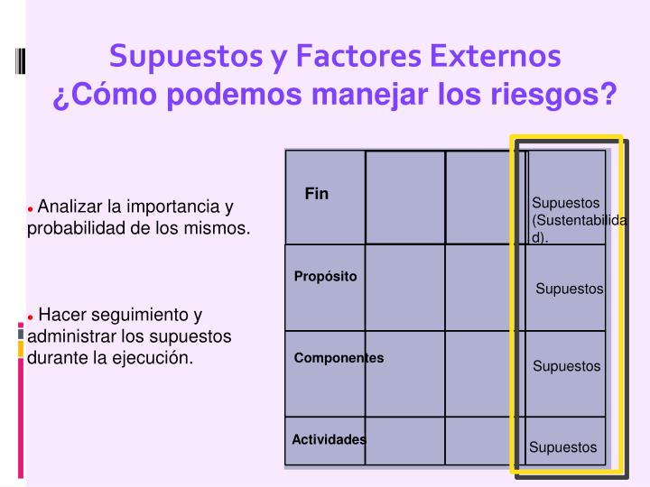 Supuestos y Factores Externos