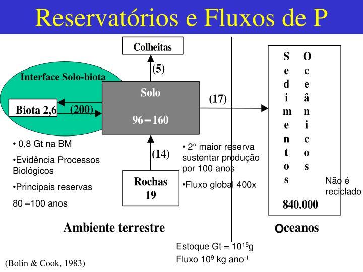 Reservatórios e Fluxos de P