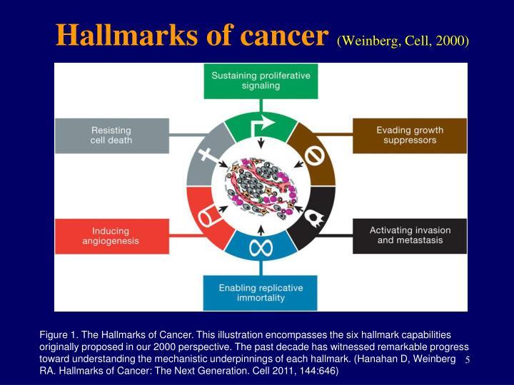 Hallmarks of cancer
