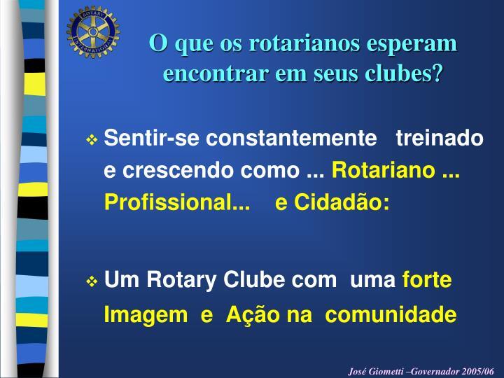 O que os rotarianos esperam   encontrar em seus clubes