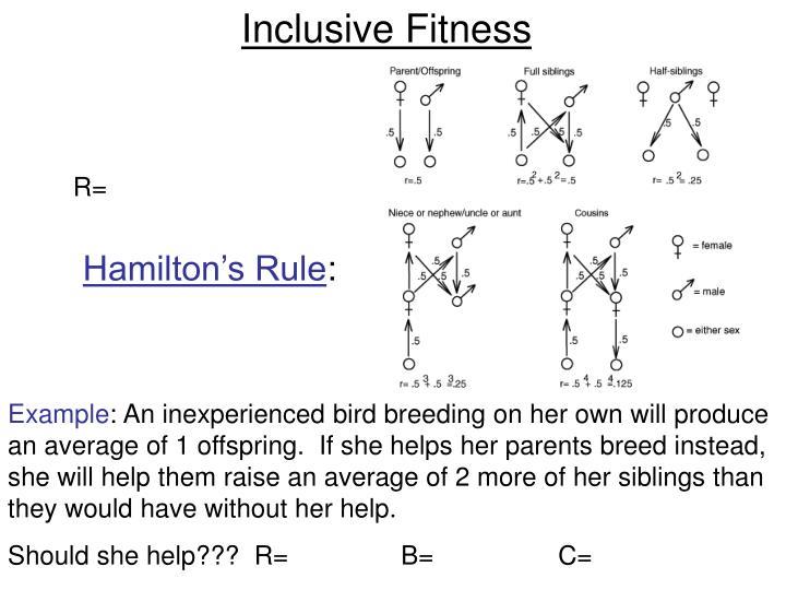 Inclusive Fitness