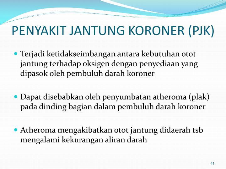 Faktor Risiko Penyakit Jantung Koroner (PJK)