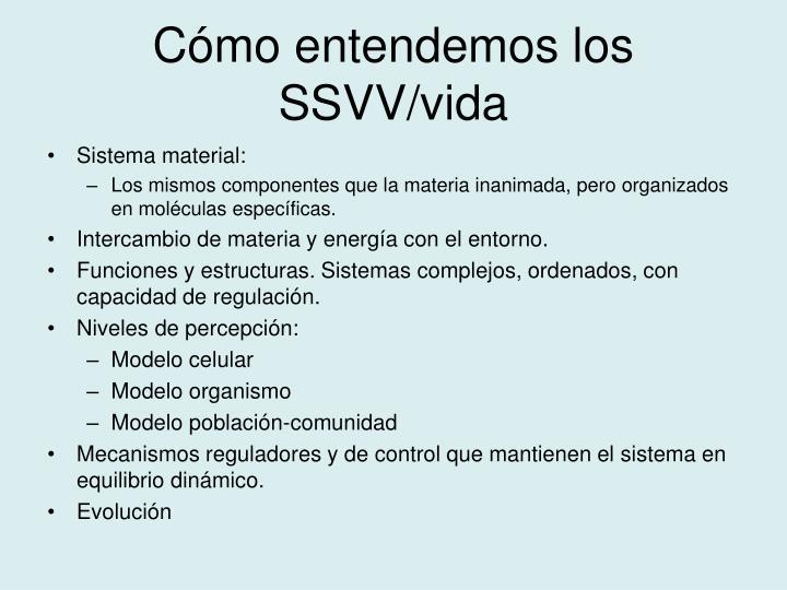Cómo entendemos los SSVV/vida