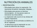 nutrici n en animales