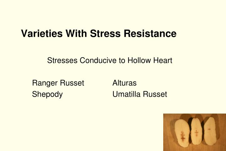 Varieties With Stress Resistance