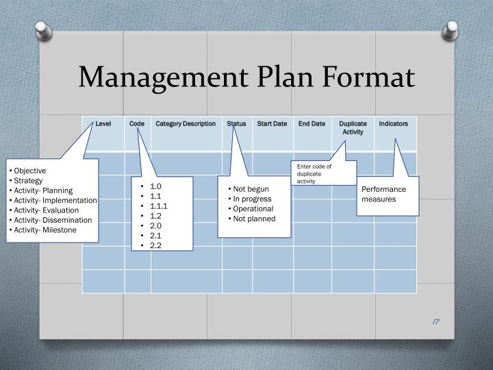 Management Plan Format