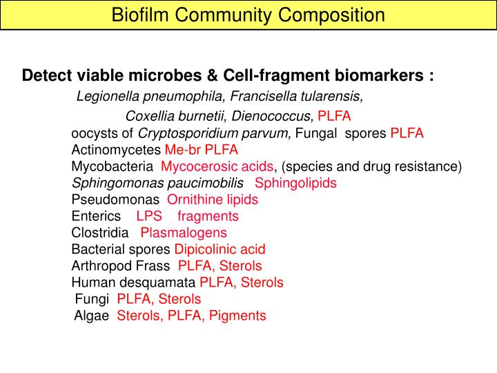 Biofilm Community Composition