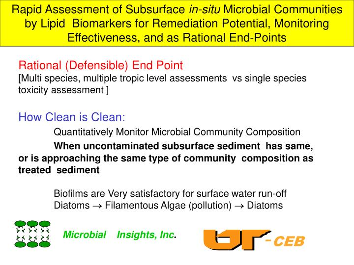 Rapid Assessment of Subsurface