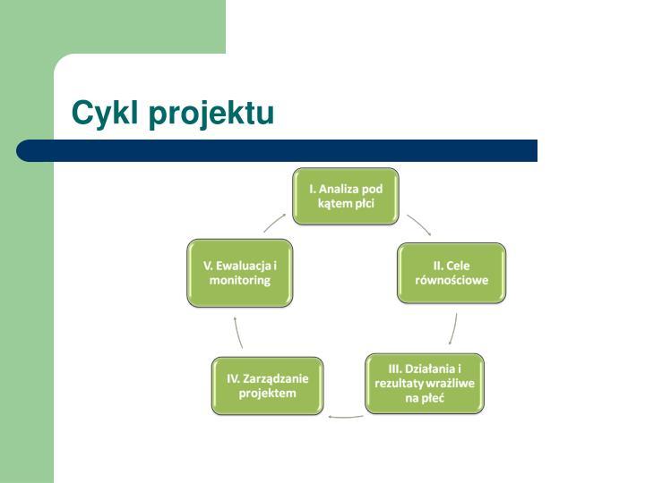 Cykl projektu