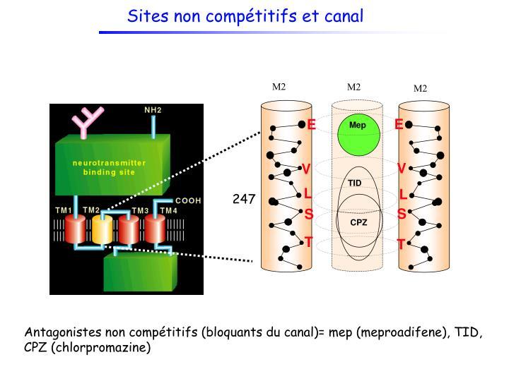 Sites non compétitifs et canal