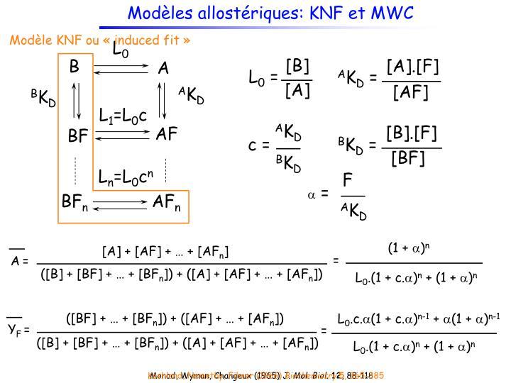 Modèles allostériques: KNF et MWC