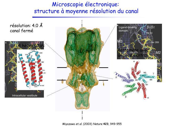 Microscopie électronique: