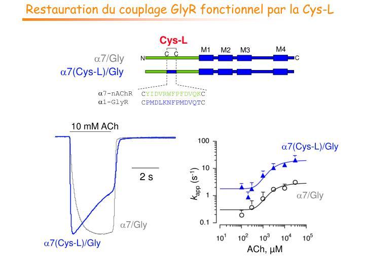 Restauration du couplage GlyR fonctionnel par la Cys-L