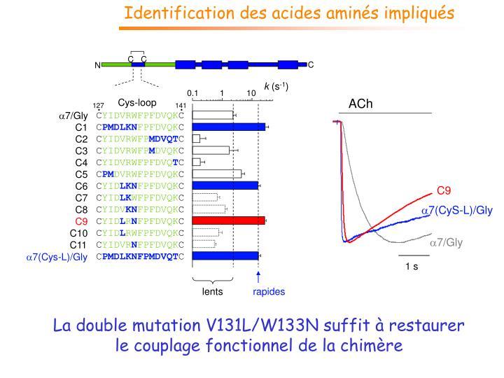 Identification des acides aminés impliqués