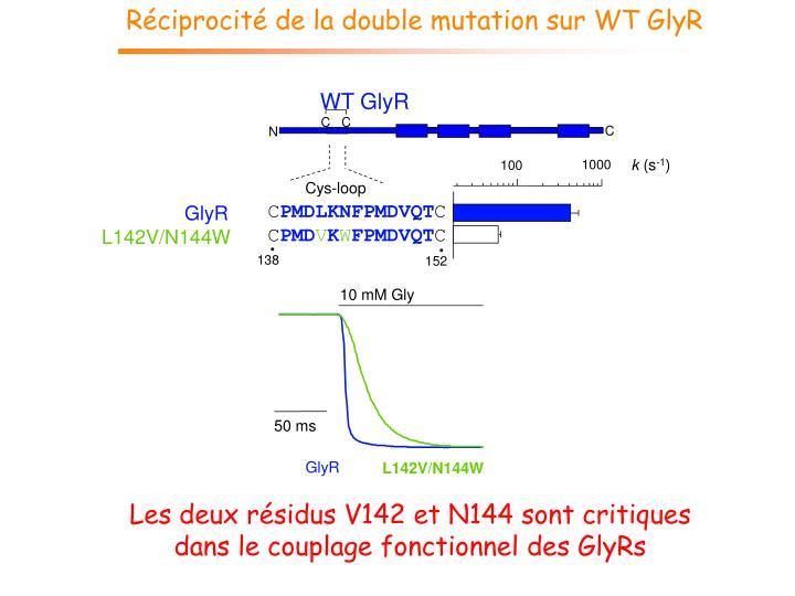 Réciprocité de la double mutation sur WT GlyR