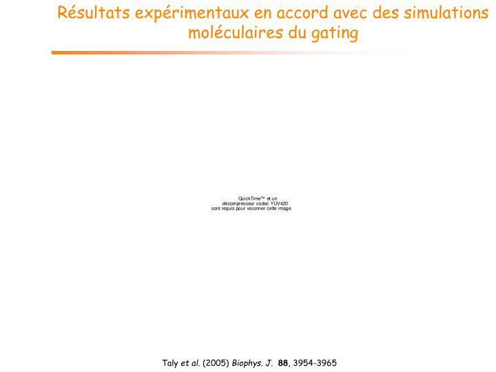 Résultats expérimentaux en accord avec des simulations