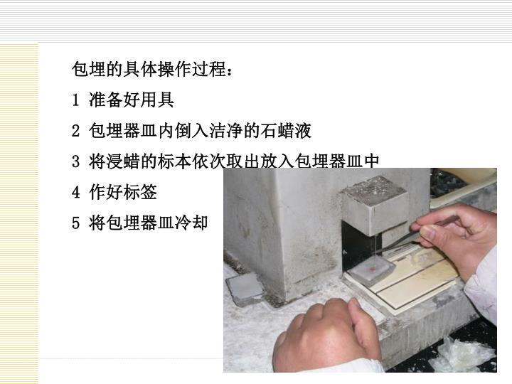 包埋的具体操作过程: