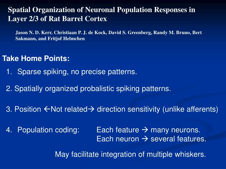 Spatial Organization of Neuronal Population Responses in
