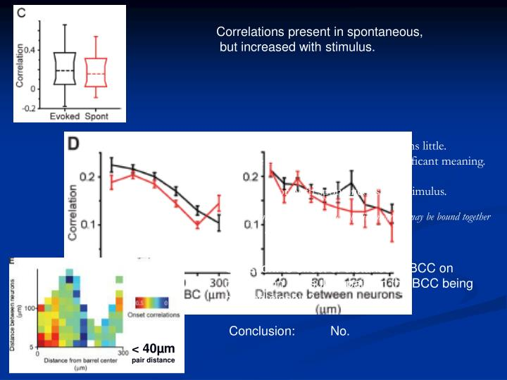 Correlations present in spontaneous,