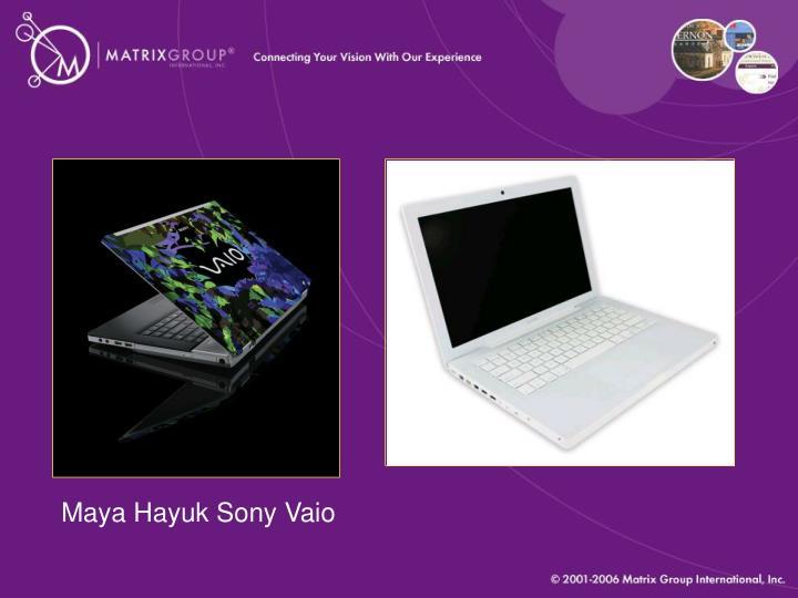 Maya Hayuk Sony Vaio