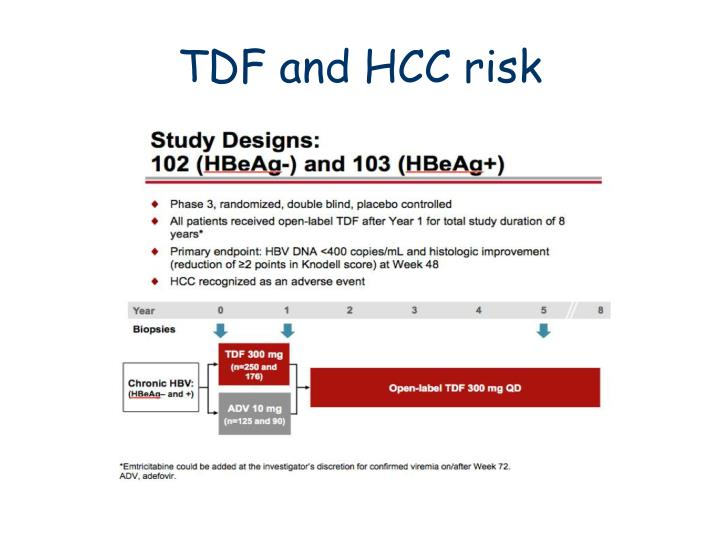 TDF and HCC risk