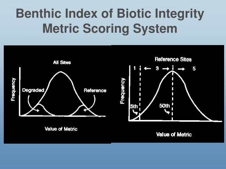 Benthic Index of Biotic Integrity