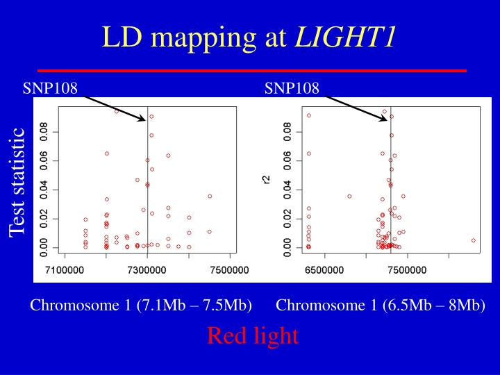 LD mapping at