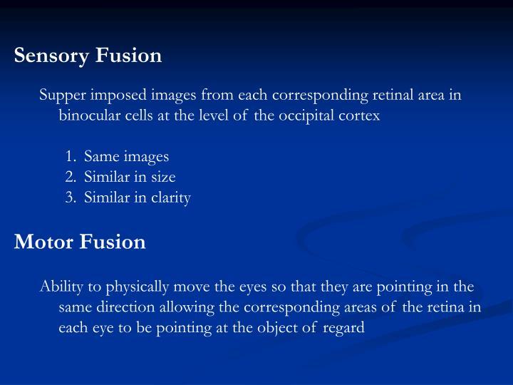Sensory Fusion