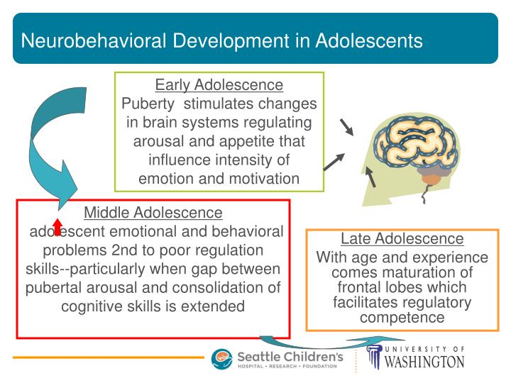 Neurobehavioral Development in Adolescents
