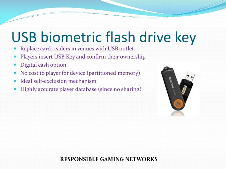 USB biometric flash drive key