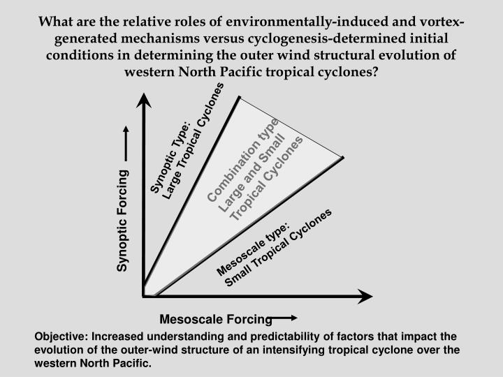 What are the relative roles of environmentally-induced and vortex-generated mechanisms versus cyclogenesis-determined initial conditions in determining the outer wind structural evolution of western North Pacific tropical cyclones?