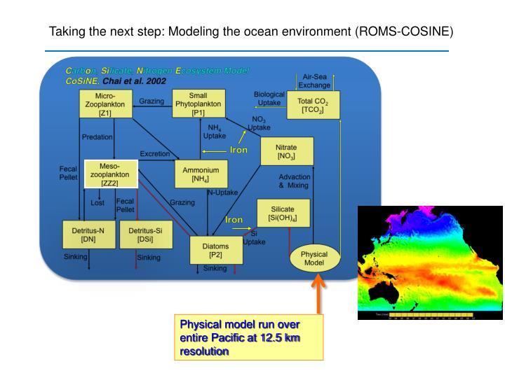 Taking the next step: Modeling the ocean environment (ROMS-COSINE)