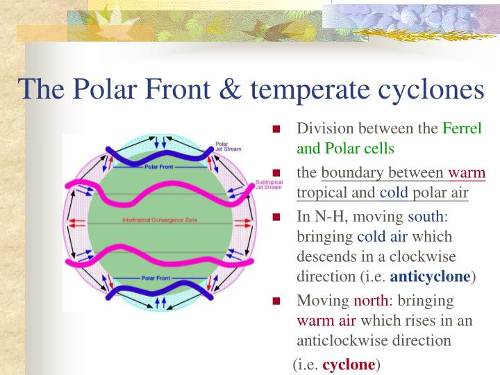 The Polar Front & temperate cyclones