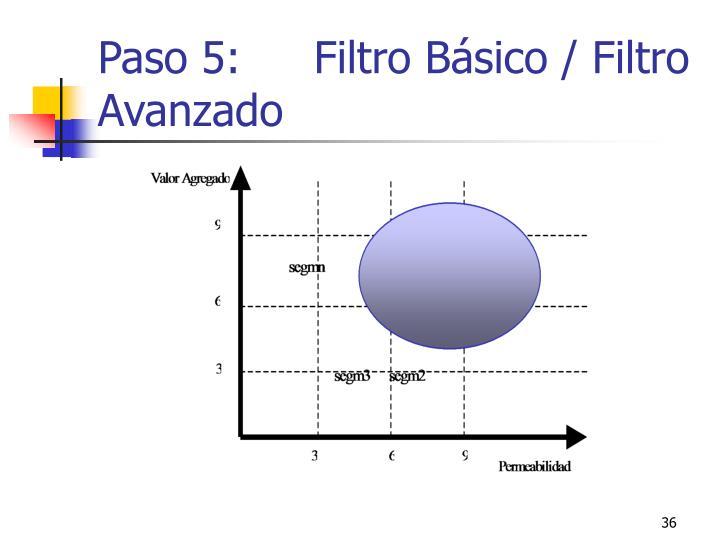 Paso 5: Filtro Básico / Filtro Avanzado