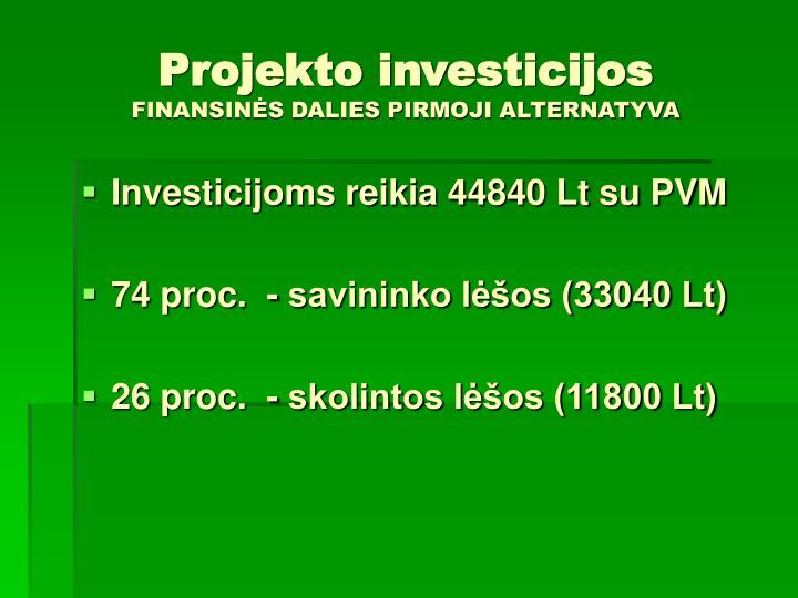 Projekto investicijos